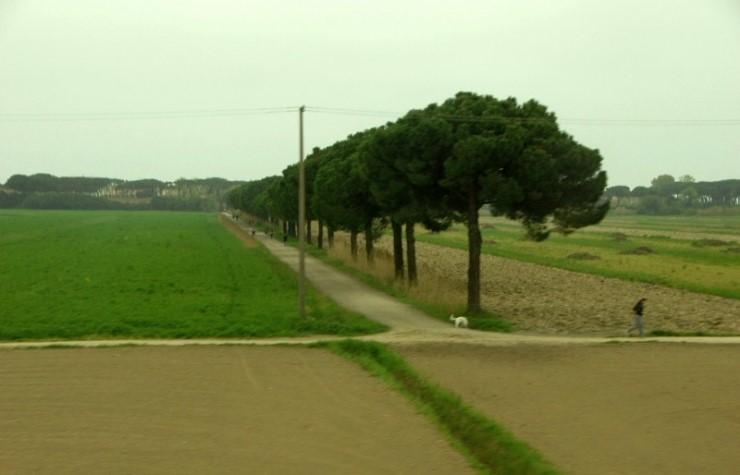 피사에서 로마 가는 길 11.jpg